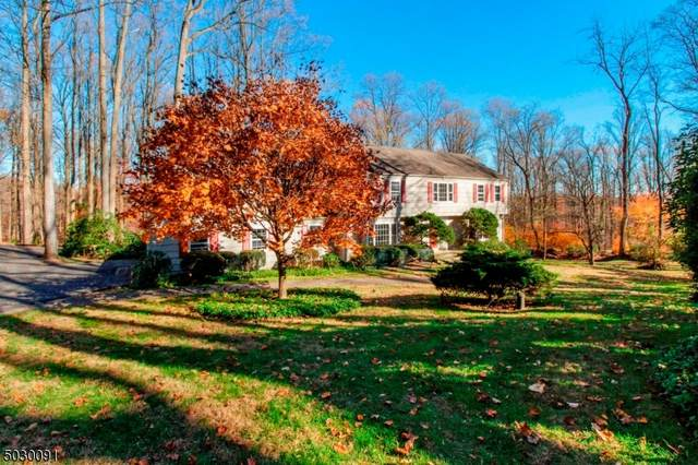18 Baxter Farm Rd, Harding Twp., NJ 07960 (MLS #3677653) :: Team Cash @ KW