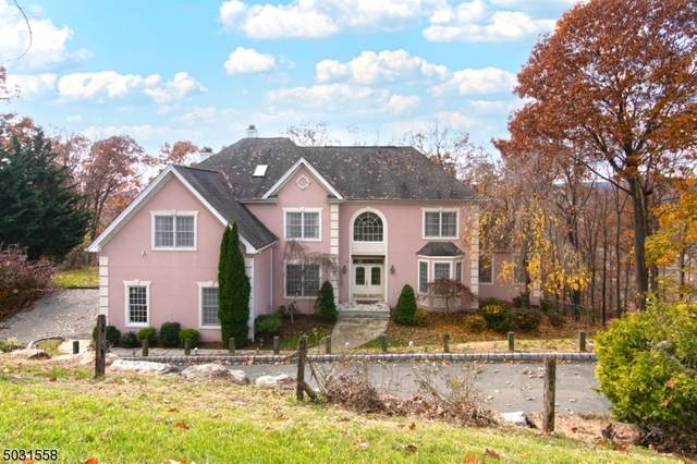 16 Vizcaya Ct, Wayne Twp., NJ 07470 (MLS #3678054) :: Caitlyn Mulligan with RE/MAX Revolution