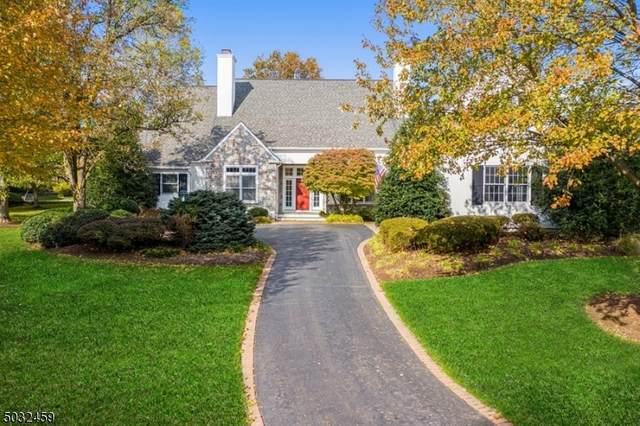 11 Arrowhead Ct, Montgomery Twp., NJ 08558 (MLS #3678677) :: Coldwell Banker Residential Brokerage