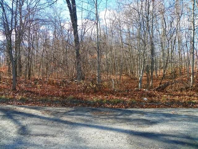 14 Lenel Road, Roxbury Twp., NJ 07850 (MLS #3680657) :: Coldwell Banker Residential Brokerage