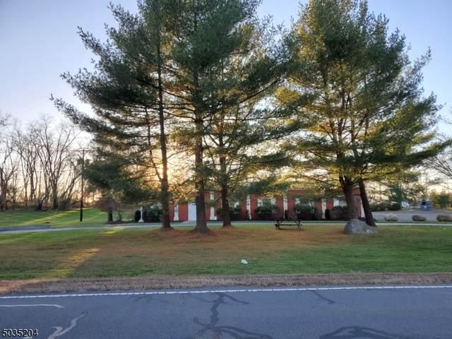 1524 Millstone River Rd, Hillsborough Twp., NJ 08844 (MLS #3681111) :: Team Cash @ KW