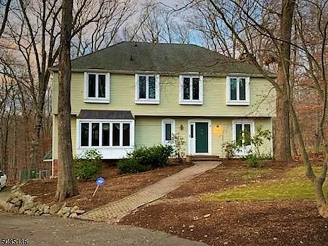 53 Copper Hill Park, Ringwood Boro, NJ 07456 (MLS #3681191) :: The Sikora Group
