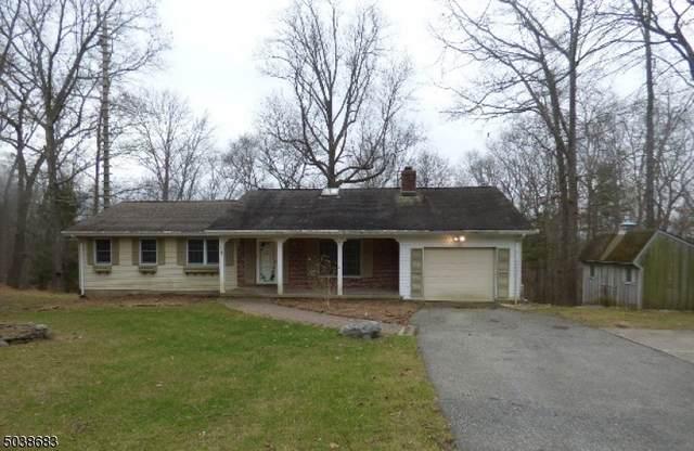 1 Frog Pond Rd, Blairstown Twp., NJ 07832 (MLS #3684188) :: SR Real Estate Group