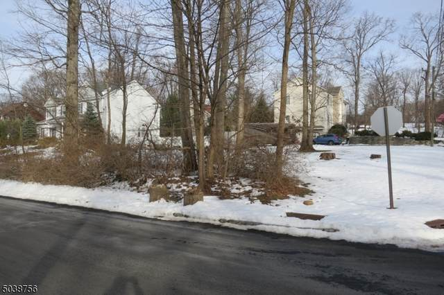 300 Top Ave, Green Brook Twp., NJ 08812 (MLS #3684208) :: Coldwell Banker Residential Brokerage