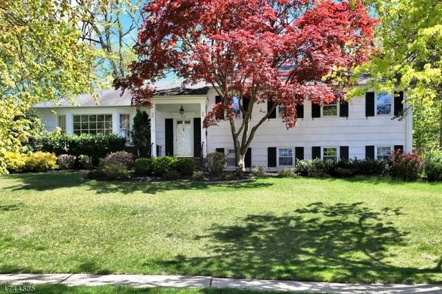 62 Candlewood Dr, New Providence Boro, NJ 07974 (MLS #3685946) :: The Sue Adler Team