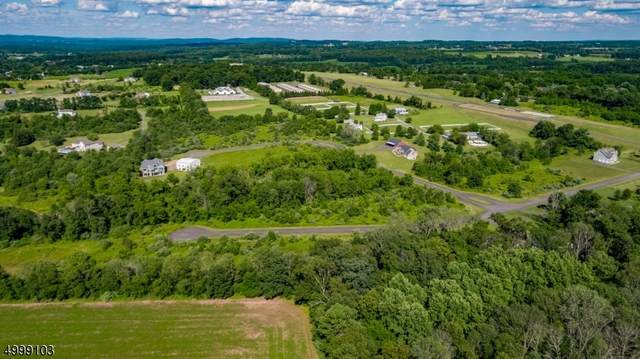 7 Cirrus Ln, Alexandria Twp., NJ 08867 (#3686389) :: Jason Freeby Group at Keller Williams Real Estate