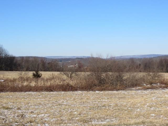 39 Old Beaver Run Rd, Lafayette Twp., NJ 07848 (MLS #3686765) :: The Premier Group NJ @ Re/Max Central