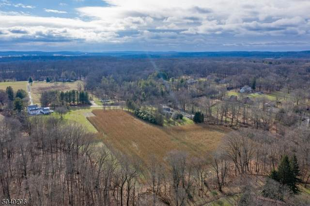 18 Haines Rd, East Amwell Twp., NJ 08559 (MLS #3686860) :: Gold Standard Realty