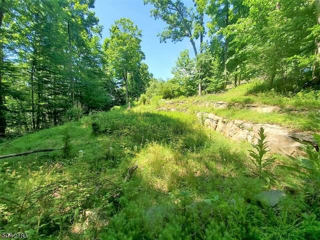 76 Skytop Rd, Andover Twp., NJ 07860 (MLS #3686994) :: Caitlyn Mulligan with RE/MAX Revolution