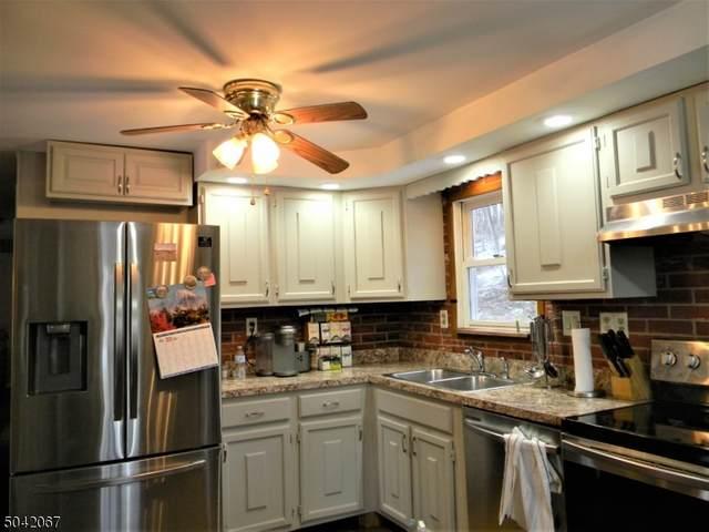 181 New Rd, Montague Twp., NJ 07827 (MLS #3687186) :: Mary K. Sheeran Team