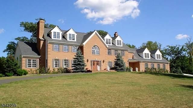370 Dutchtown Rd, Hillsborough Twp., NJ 08844 (#3687225) :: Jason Freeby Group at Keller Williams Real Estate