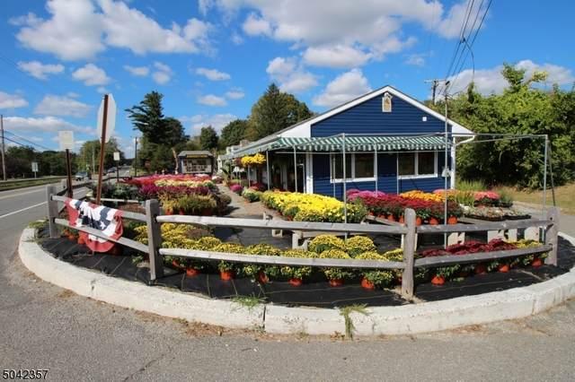 209 Newton Sparta Rd, Andover Twp., NJ 07860 (MLS #3687271) :: William Raveis Baer & McIntosh
