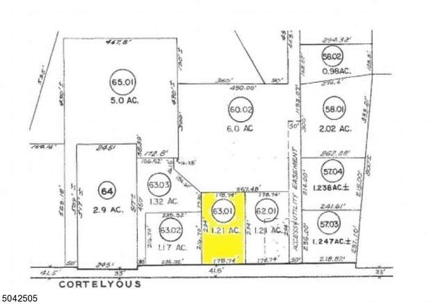 118 Cortelyou Ln, Franklin Twp., NJ 08873 (MLS #3687279) :: REMAX Platinum