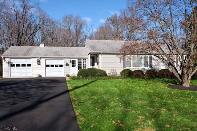 444 Route 518, Montgomery Twp., NJ 08558 (MLS #3687606) :: Caitlyn Mulligan with RE/MAX Revolution