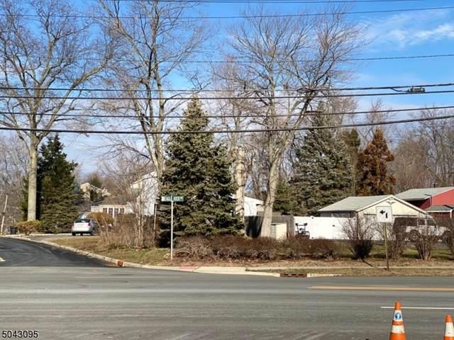 262 Eagle Rock Avenue, Roseland Boro, NJ 07068 (MLS #3687977) :: SR Real Estate Group