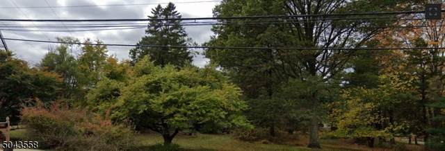 1202 Washington Valley Rd, Bridgewater Twp., NJ 08807 (MLS #3688171) :: William Raveis Baer & McIntosh