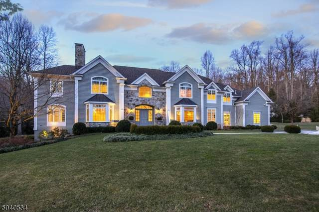 20 Jockey Hollow Rd, Bernardsville Boro, NJ 07924 (MLS #3688450) :: William Raveis Baer & McIntosh