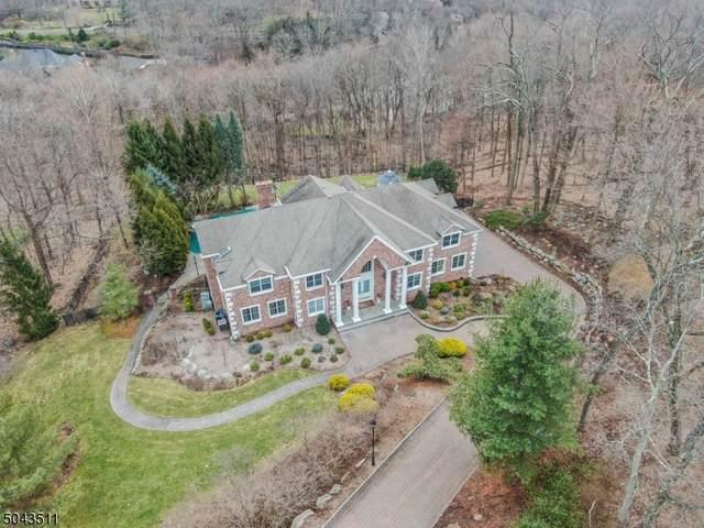 878 Ridge View Way, Franklin Lakes Boro, NJ 07417 (#3688531) :: Daunno Realty Services, LLC