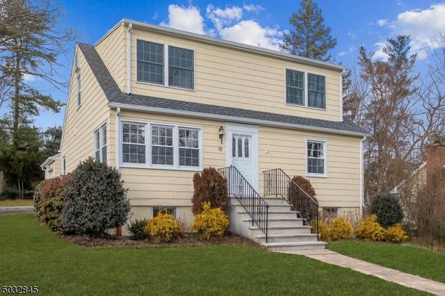 156 Hillside Ave, Chatham Boro, NJ 07928 (#3688651) :: Daunno Realty Services, LLC
