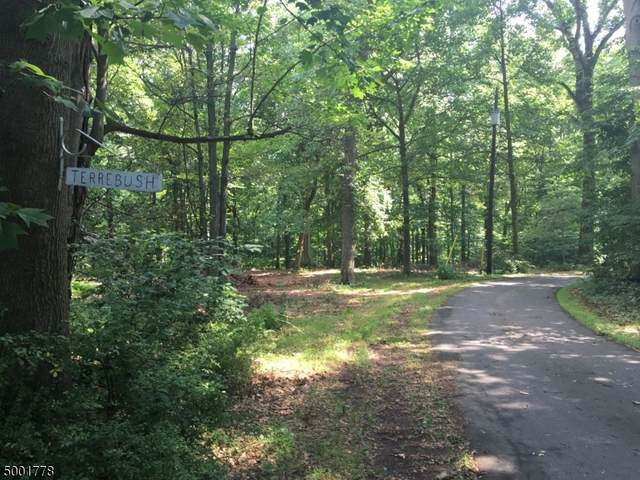 573 Route 579, Union Twp., NJ 08867 (MLS #3688926) :: SR Real Estate Group