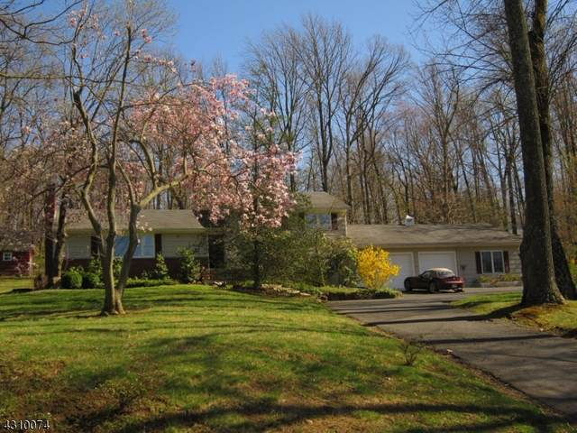 333 Meyersville Rd, Long Hill Twp., NJ 07933 (MLS #3690067) :: The Sikora Group