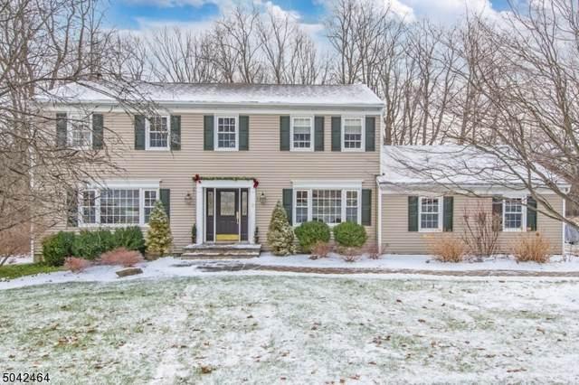 2 Green Hills Rd, Washington Twp., NJ 07853 (MLS #3690081) :: Team Francesco/Christie's International Real Estate