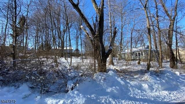 0 Lakeview Dr, West Milford Twp., NJ 07480 (MLS #3691292) :: Kiliszek Real Estate Experts