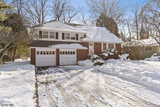 24 Brookdale Rd, Cranford Twp., NJ 07016 (#3691825) :: Daunno Realty Services, LLC