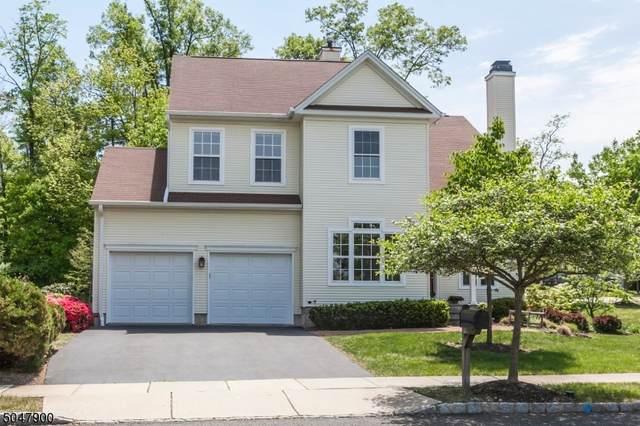 1 Danby Ct, Montgomery Twp., NJ 08540 (MLS #3691856) :: The Sikora Group