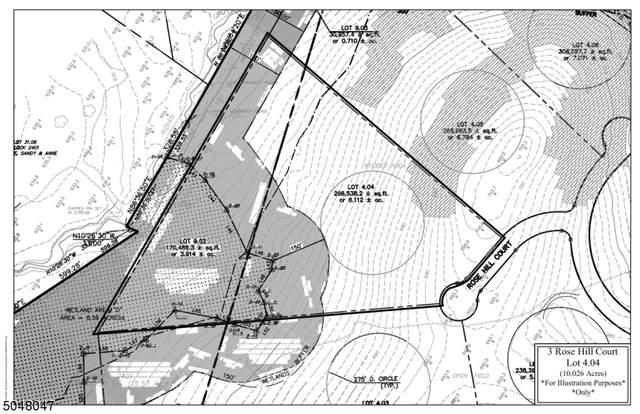 3 Rose Hill, Bernardsville Boro, NJ 07924 (MLS #3691993) :: SR Real Estate Group