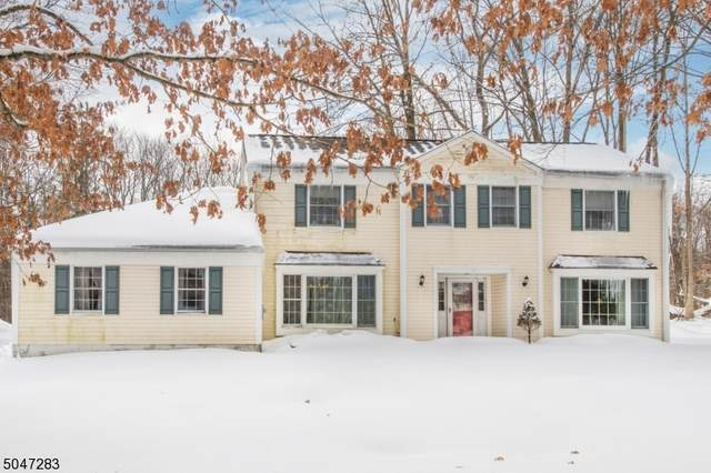 7 Shadetree Pl, Washington Twp., NJ 07853 (MLS #3693547) :: Pina Nazario
