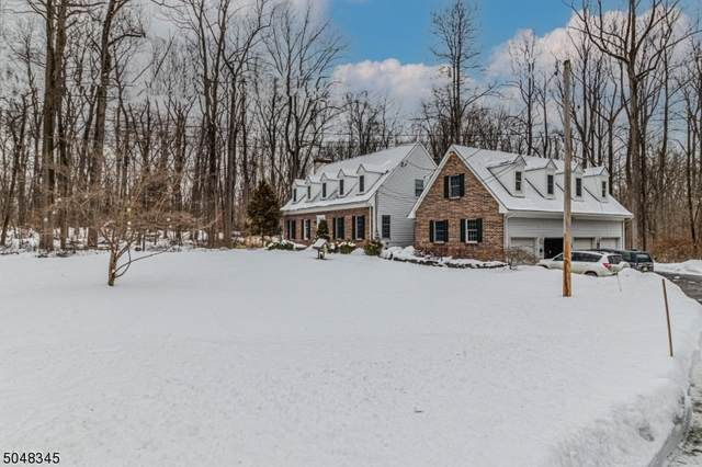 16 S Hill Rd, East Amwell Twp., NJ 08525 (MLS #3693777) :: The Sikora Group