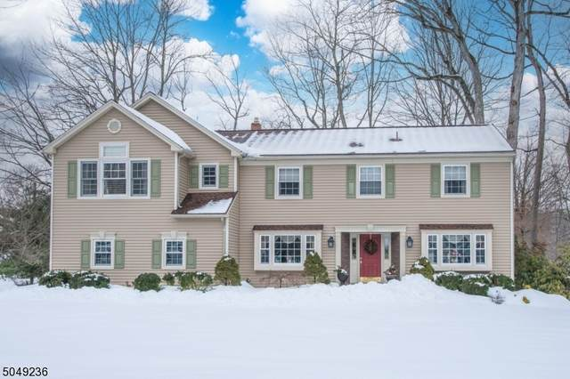 7 Old Chimney Rd, Randolph Twp., NJ 07869 (MLS #3694028) :: SR Real Estate Group
