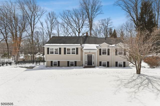 8 Lindabury Ln, Morris Plains Boro, NJ 07950 (MLS #3694079) :: SR Real Estate Group