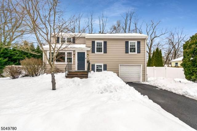 67 W Valley View Dr, Morristown Town, NJ 07960 (MLS #3694127) :: SR Real Estate Group