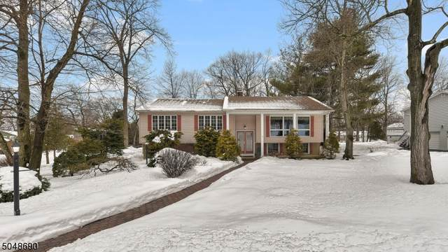 12 Knight Rd, Wayne Twp., NJ 07470 (MLS #3694223) :: REMAX Platinum