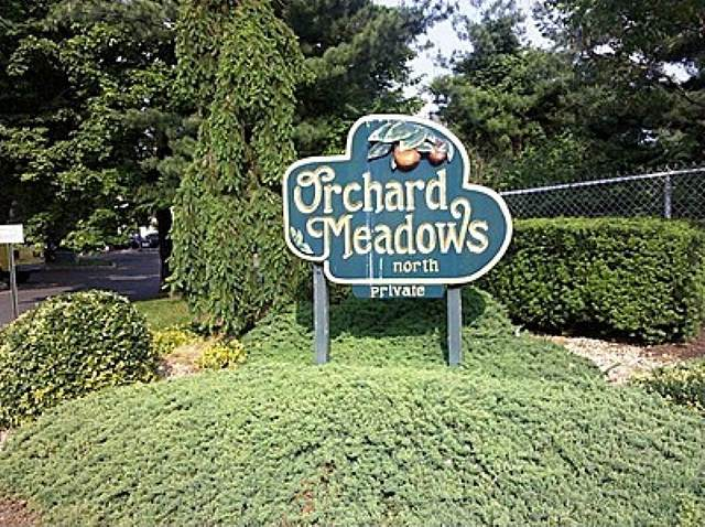 504 Orchard Meadows Dr, Union Twp., NJ 07083 (MLS #3694362) :: REMAX Platinum