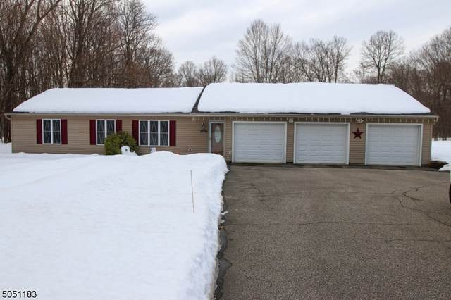 172 New Rd, Montague Twp., NJ 07827 (#3694635) :: Jason Freeby Group at Keller Williams Real Estate