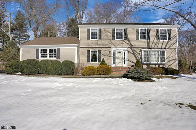 288 Tanglewood Trail, Long Hill Twp., NJ 07933 (#3694768) :: Jason Freeby Group at Keller Williams Real Estate