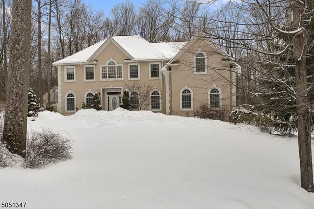 18 Stacey Ct, Sparta Twp., NJ 07871 (MLS #3694814) :: The Sue Adler Team