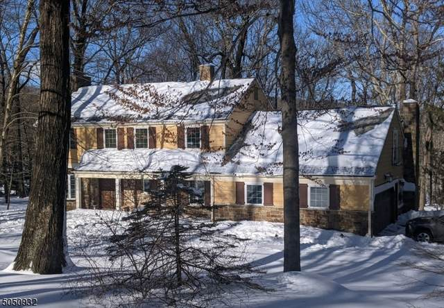 51 Cherry Tree Ln, Kinnelon Boro, NJ 07405 (MLS #3695152) :: The Sue Adler Team