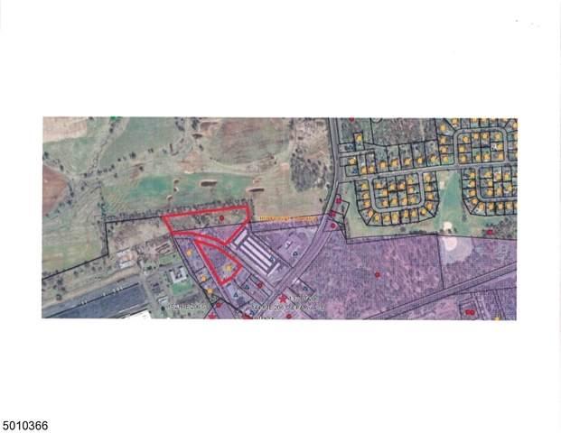 130 Route 206, Hillsborough Twp., NJ 08844 (MLS #3695193) :: Zebaida Group at Keller Williams Realty