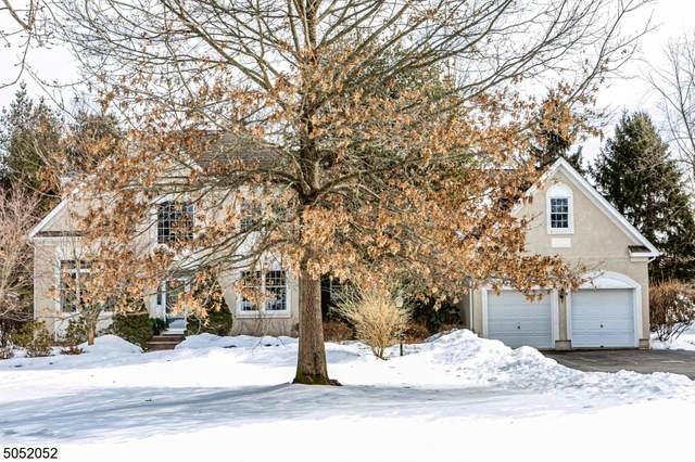 3 Cascade Ct, Montgomery Twp., NJ 08558 (MLS #3695329) :: SR Real Estate Group