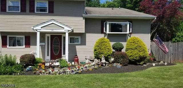 211 Woodmere St, Raritan Boro, NJ 08869 (MLS #3695338) :: William Raveis Baer & McIntosh