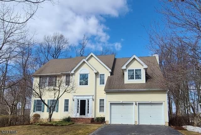 6 Jupiter Hills Ct, Montgomery Twp., NJ 08558 (MLS #3695572) :: SR Real Estate Group