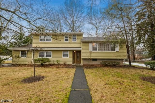 897 Ascot Rd, Scotch Plains Twp., NJ 07076 (MLS #3695756) :: The Sikora Group