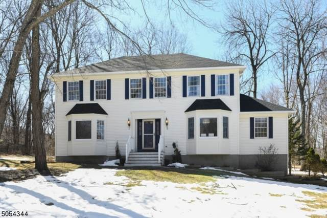 5 Dallarda Dr, Allamuchy Twp., NJ 07840 (MLS #3698188) :: Provident Legacy Real Estate Services, LLC
