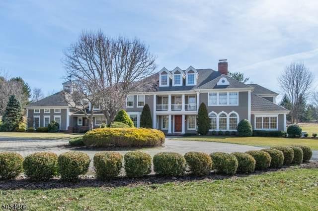 18 Baileys Mill Rd, Harding Twp., NJ 07976 (MLS #3701190) :: SR Real Estate Group