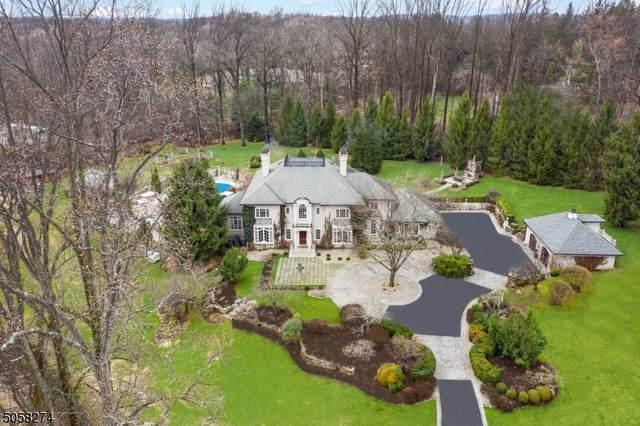 110 Village Rd, Harding Twp., NJ 07976 (MLS #3701645) :: SR Real Estate Group