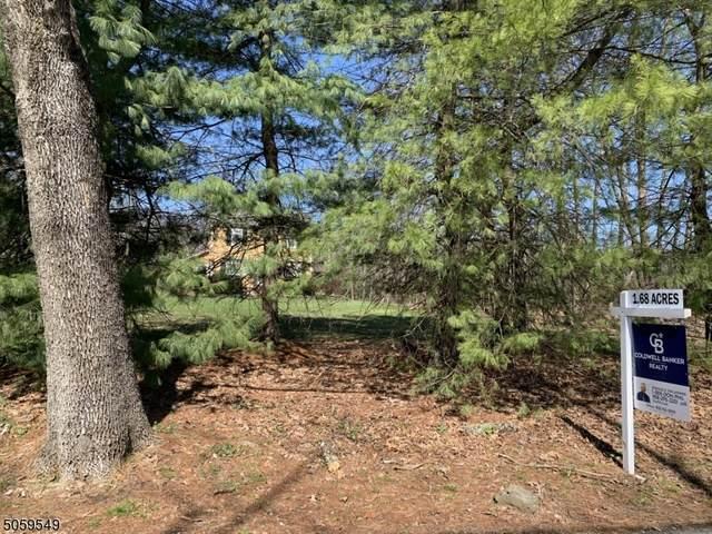 1835 Mountain Top Rd, Bridgewater Twp., NJ 08807 (MLS #3701701) :: Gold Standard Realty